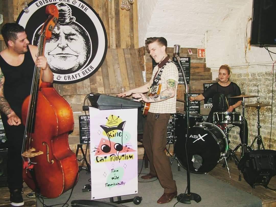 Kinga Cat Rhythm